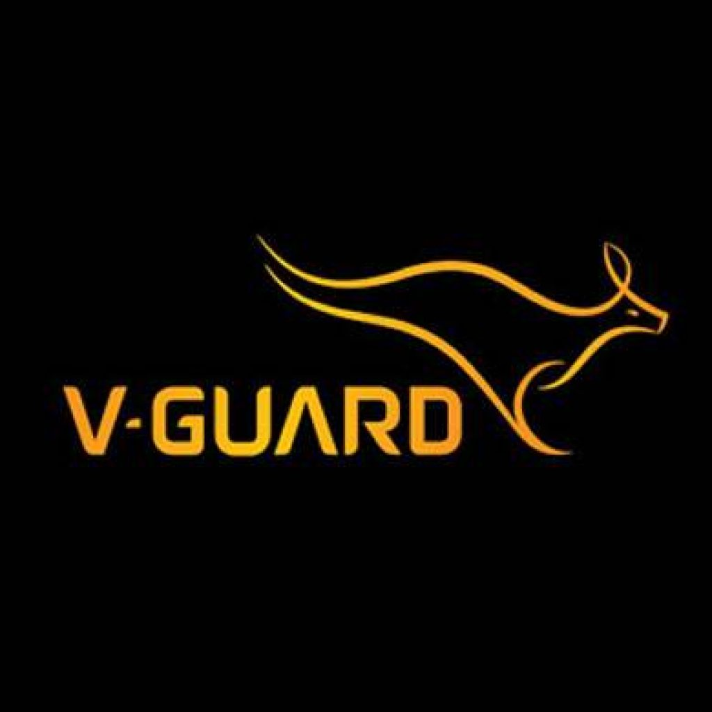 V- Guard Logo - Onboarding Case Study